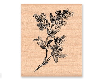 LILAC FLOWER Rubber Stamp~Licac Branch or Bush~Lilac Tree~Summer or Spring Flower~New Hampshire State Flower~Wood Mounted Stamp (21-24)