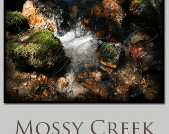 Mossy Creek photo print in beautiful oranges and green