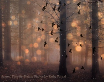 Nature Photography, Surreal Haunting Woodlands, Fantasy Fairy Lights Stars Birds, Surreal Brown Nature Art, Fairytale Nature Wall Art Decor