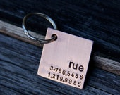 Custom Square Dog Tag / Pet ID Tag -  Rooney, in 1'' Brushed Aluminum or Copper