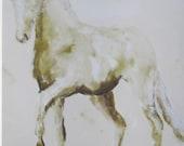Dressage Horse  8 x 10 Gi...
