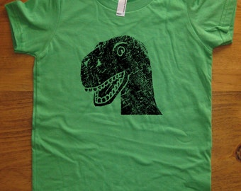 Dinosaur shirt - Kids Shirt - T Rex TShirt - 8 Colors Available - Sizes 2T, 4T, 6, 8, 10, 12 - Gift Friendly