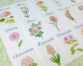 Pink  Flower Table Cards, Blush Pink Flower Table Tent Card, Pink Flower Table Tent, Blush Pink Wedding Table  Blush Pink Wedding Table Card