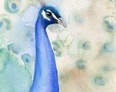 Peacock Watercolor Archival Print - 5x7 - Bird Painting - Nature Decor - Art Print - Blue - Green