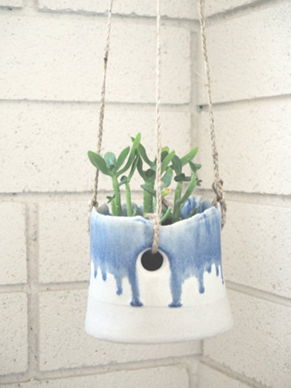 white and blue hanging planter