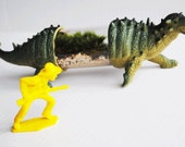 Live Dinosaur terrarium ANKLYLOSAUR