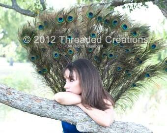 Peacock Spray - Peacock Tail - Peacock Costume - Peacock Wings
