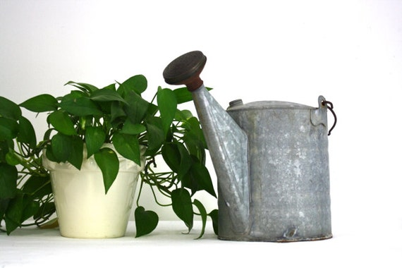 Vintage Galvanized Metal Watering Can