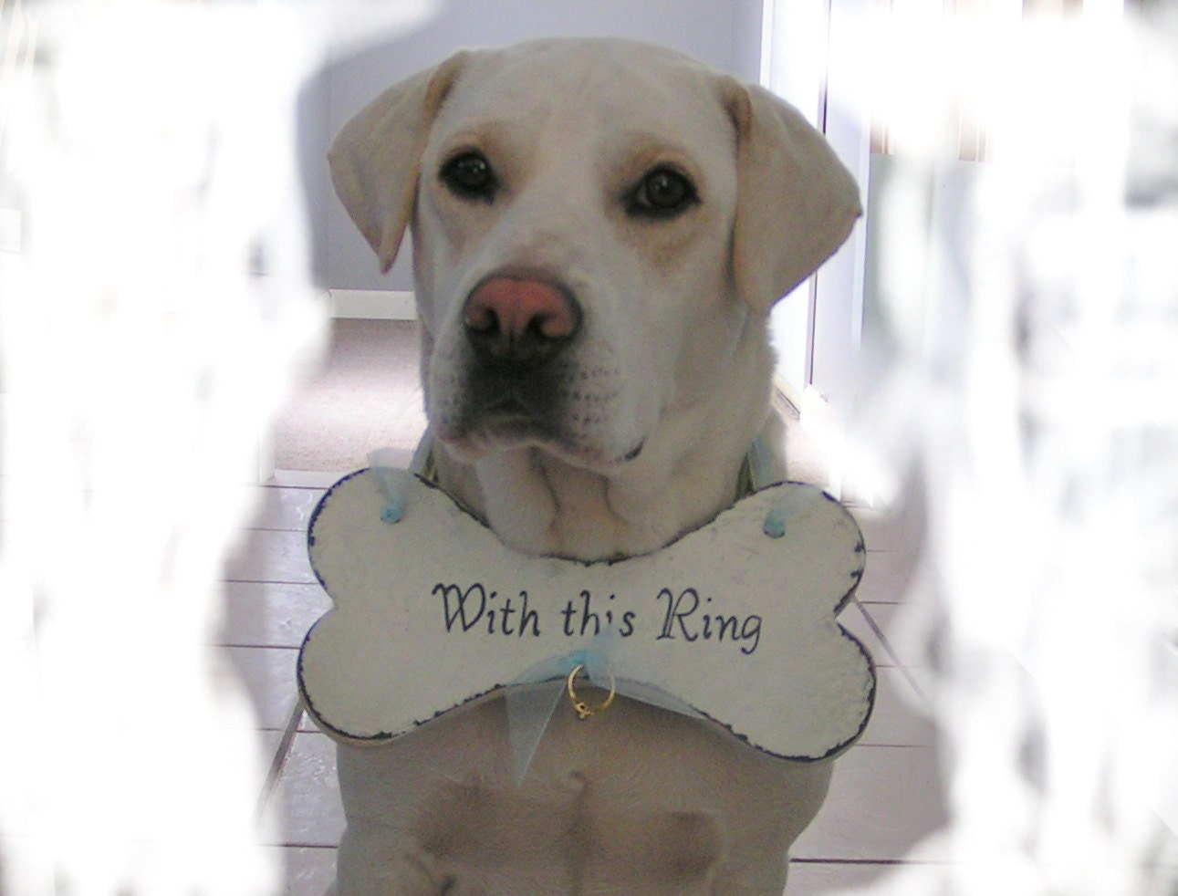 Ring bearer dog bone by route17westweddings on etsy for Dog wedding ring bearer pillow