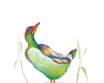 The Duck - The Equilibrist - Original Colour Pencil Drawing - 8 x 6 inch - Print