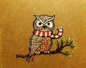 Owl Christmas Card - holiday card of cute owl with scarf on pine branch, blank inside