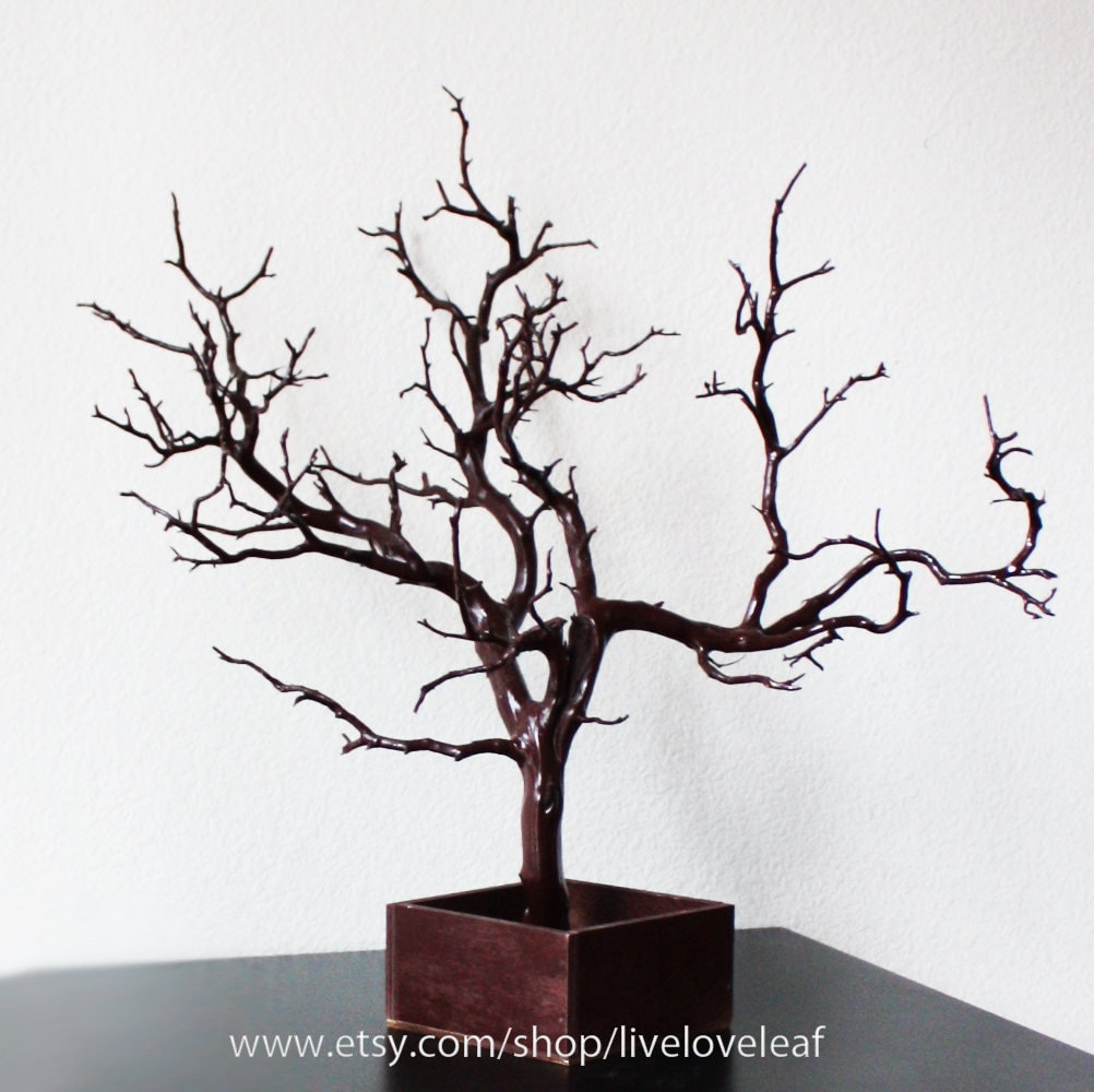 Brown painted manzanita jewelry tree jewelry display unique for Tree branch jewelry holder