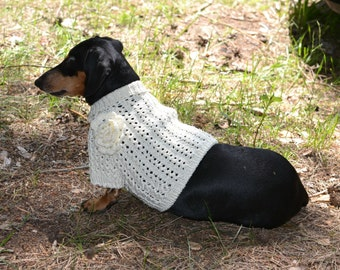 Knitting Patterns For Dachshund Dog Sweaters : Dog Clothes dog sweater Bee Clothes Hand Knitting dachshund
