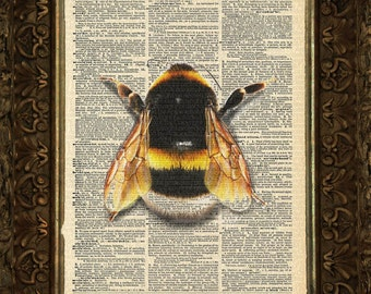 Bumble Bee on Antique Dictionary Page, art print, Wall Decor, Wall Art Mixed Media Collage , Gift