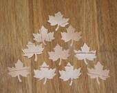 Birch Bark Confetti Maple Leaves 10