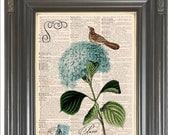 Blue hydrangea Brown Bird print on dictionary or music COUPON SALE Paris Dictionary art print Sheet music print Digital art print No. 384