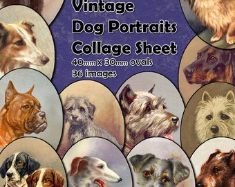 Vintage Dog Portraits Digital Collage Sheet  - 40mm x 30mm ovals  - 36 different images - perfect for jewelry making Instant Download