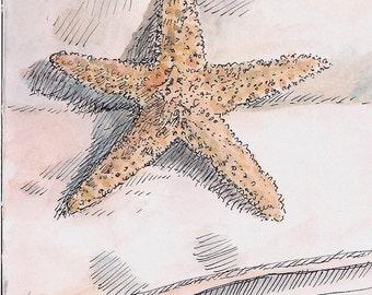 Starfish orange and yellow great gift art card