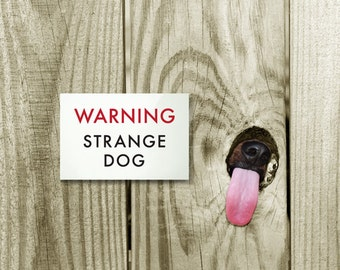 Funny Dog Sign Fail. Engrish Humor. Strange Dog