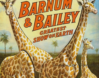 Wild African Giraffes Barnum & Bailey Circus Poster 1910s Full Color Advertisement Lithograph To Frame