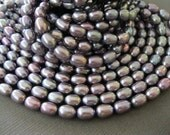 Oval Grey Lavender Rainbow Rice Pearls Discount on Multiples