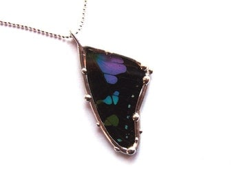 Purple and Black Graphium Butterfly Glass Necklace - Real Butterfly Jewelry