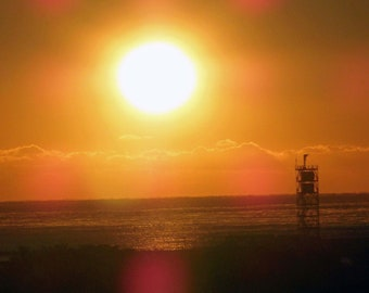 Tropical Sunset in Sarasota Florida