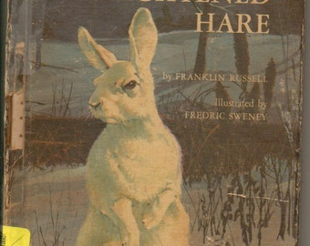 The Frightened Hare by Franklin Russell