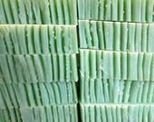 Eucalyptus - Vegan - You Stink Soap