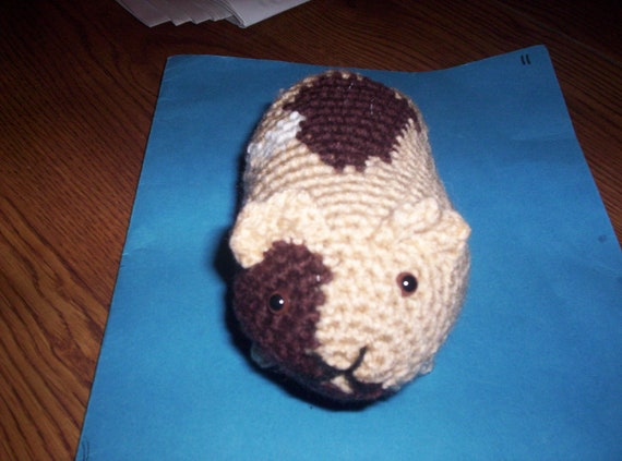 Petey the crocheted guinea pig