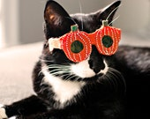Pumpkin-Shaped Cat Glasses / Halloween glasses for cats