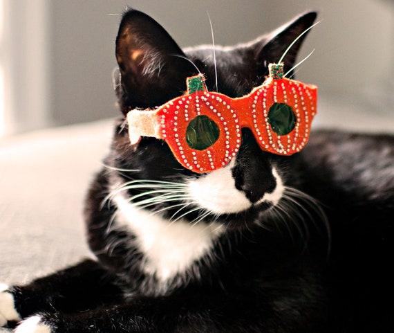 Pumpkin-Shaped Cat Glasses / Halloween glasses for cats