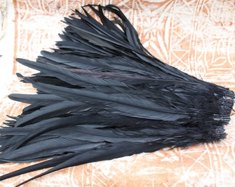 15-18 inch length very long Jet black coque- rooster feathers, rooster tail feathers, tahitian costume, millinery