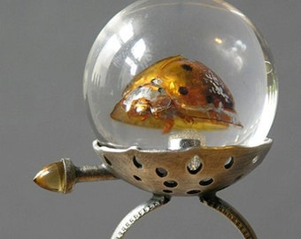 Ladybird Ladybird Fly Away Home Ring Made With Real Insect In Resin Orb