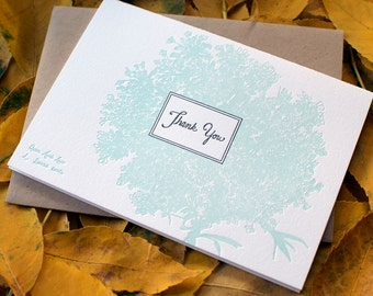 Queen Anne's Lace Thank You Card (Boxed Set of 6 Cards)