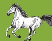 Saddlebred Horse Print