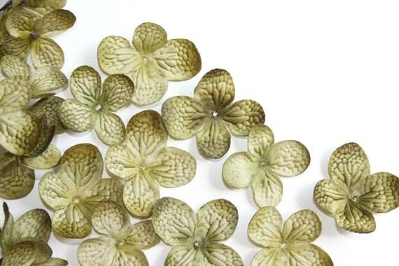 25 Silk Hydrangea Petals in Olive Green ... silk flower, artificial flower, millinery craft - ITEM 0789