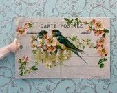 Blue Birds Postcard Gift Tags