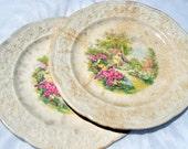 Edwin M. Knowles Shabby Decor China Plates