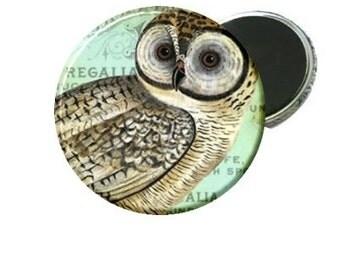 Magnet - Vintage Owl Image