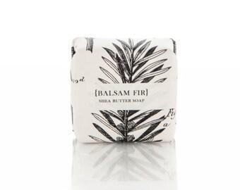 Balsam & Fir Shea Butter Soap - Guest Sized Bar