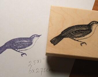 P15 Wren bird rubber stamp