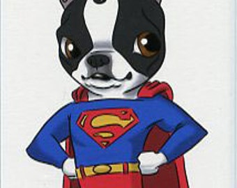 Superman - Boston Terrier magnet