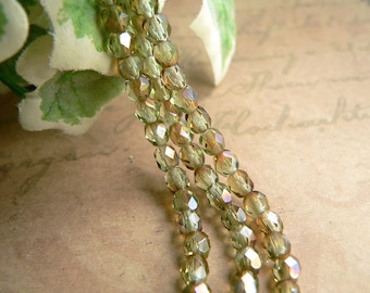 Green Czech Glass Beads Chrysolite Celsian Round Firepolished 4mm (50)