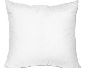 ADD a 14 x 14 Pillow form  to  your order.