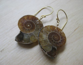 Insouciant Studios Large Ammonite Earrings