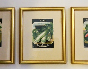 Set of 3 Vintage Card Seed Packets - Framed in Gold