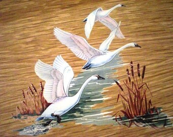 Haskelite Lap Serving Trays Swans In Flight