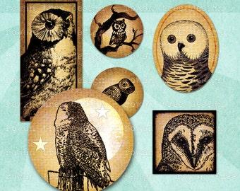 VINTAGE OWLS Craft Sampler Digital Collage Sheet - no. 0177