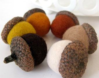 Needle Wool Felted 6 Natural Acorns in Autumn Shades Home Decor